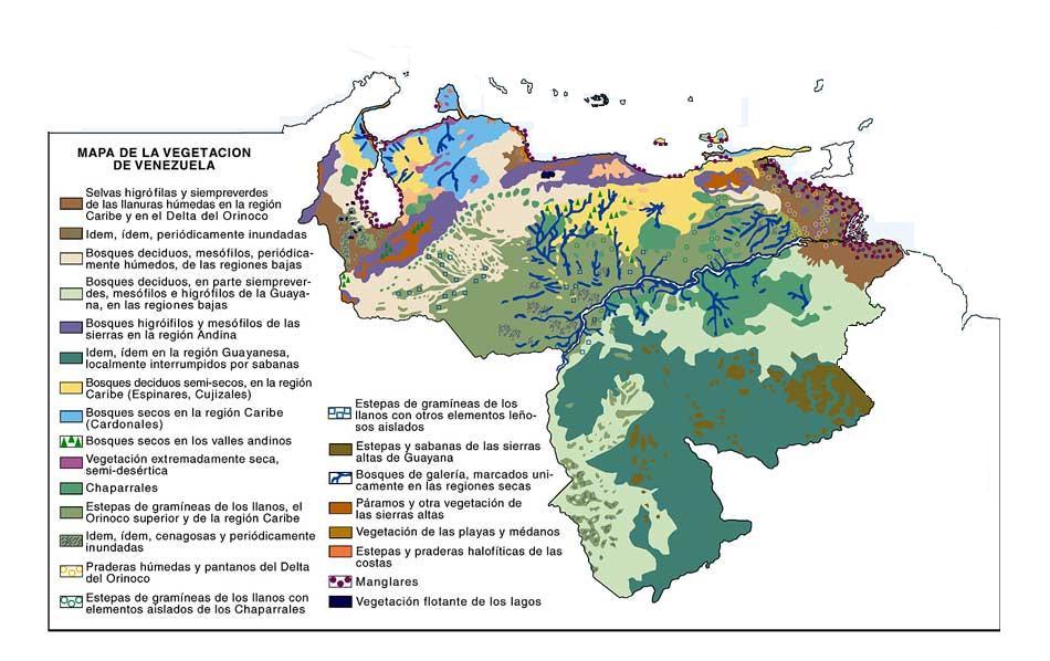Venezuela vegetation map gumiabroncs Gallery
