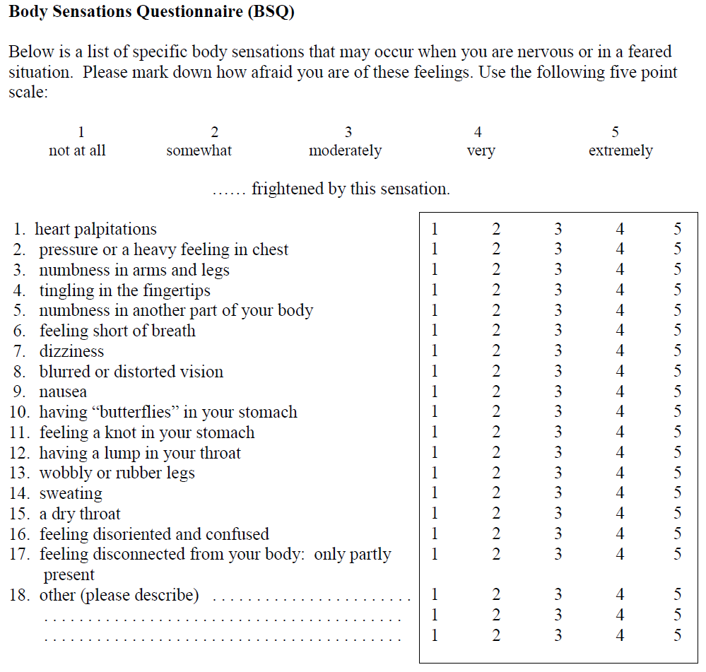 Body Image Questionnaire Scale